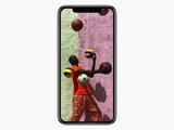 灰色苹果iPhone X(64GB)第29张图