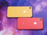 苹果iPhone XR(64GB)产品对比第3张图